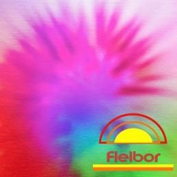 Iluminador En Polvo - Polvo De Nacar X    2 G - Fleibor Fleibor - 1