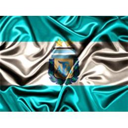 Lamina Cubretorta Argentina X Unid.  - 1