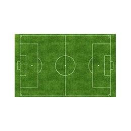 Lamina Cubretorta Cancha De Futbol X Unid.  - 1