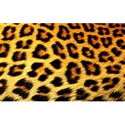 Lamina Cubretorta Animal Print 03 X Unid.  - 1